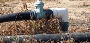 Pipe In Field