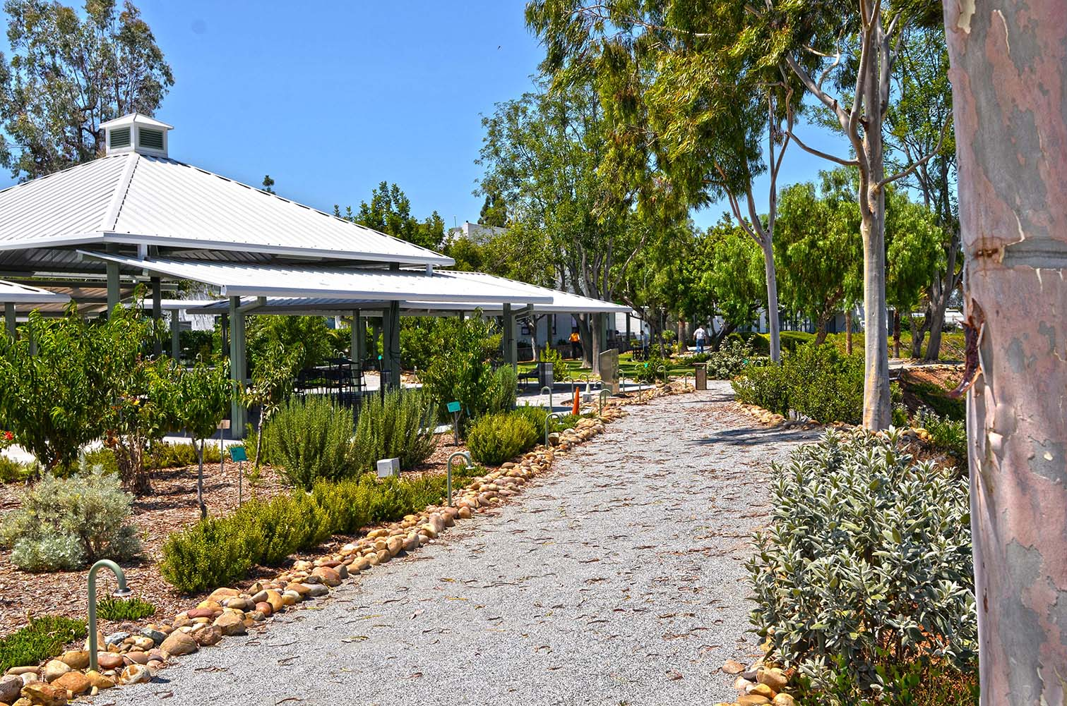 pavilion and path